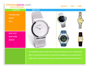 Sarasota Website Design - Ecommerce Site Designers