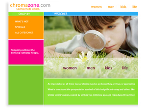 Chromozone - Sarasota E-Commerce Website Designer