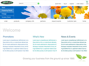 Michelles - Sarasota Flower Website Design